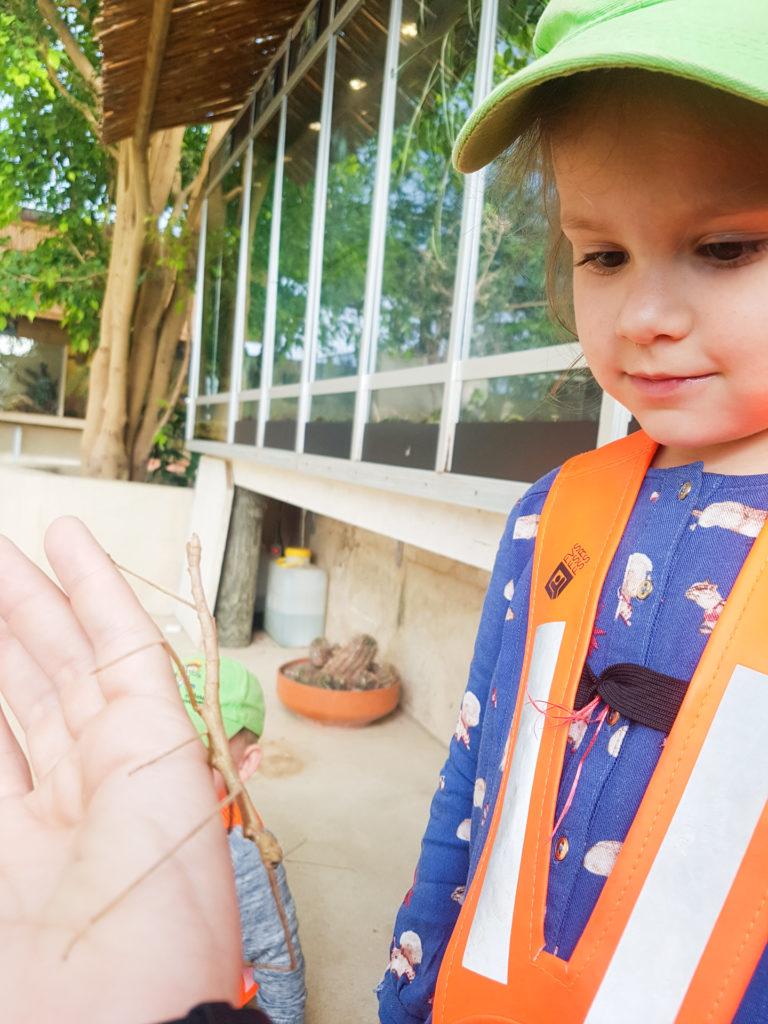 tropiquarium-grands-3